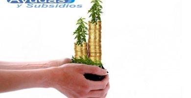 Mercado solidario apoyo económico